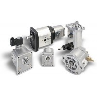 Pompe à engrenages PLP20.6,3D0-12**-LBE/BC-N-EL-FS 02012393 Casappa